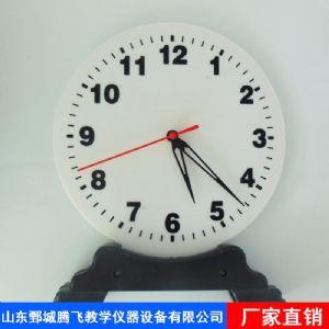 钟表模型演示用