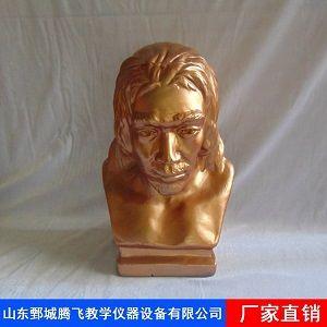北京人头像